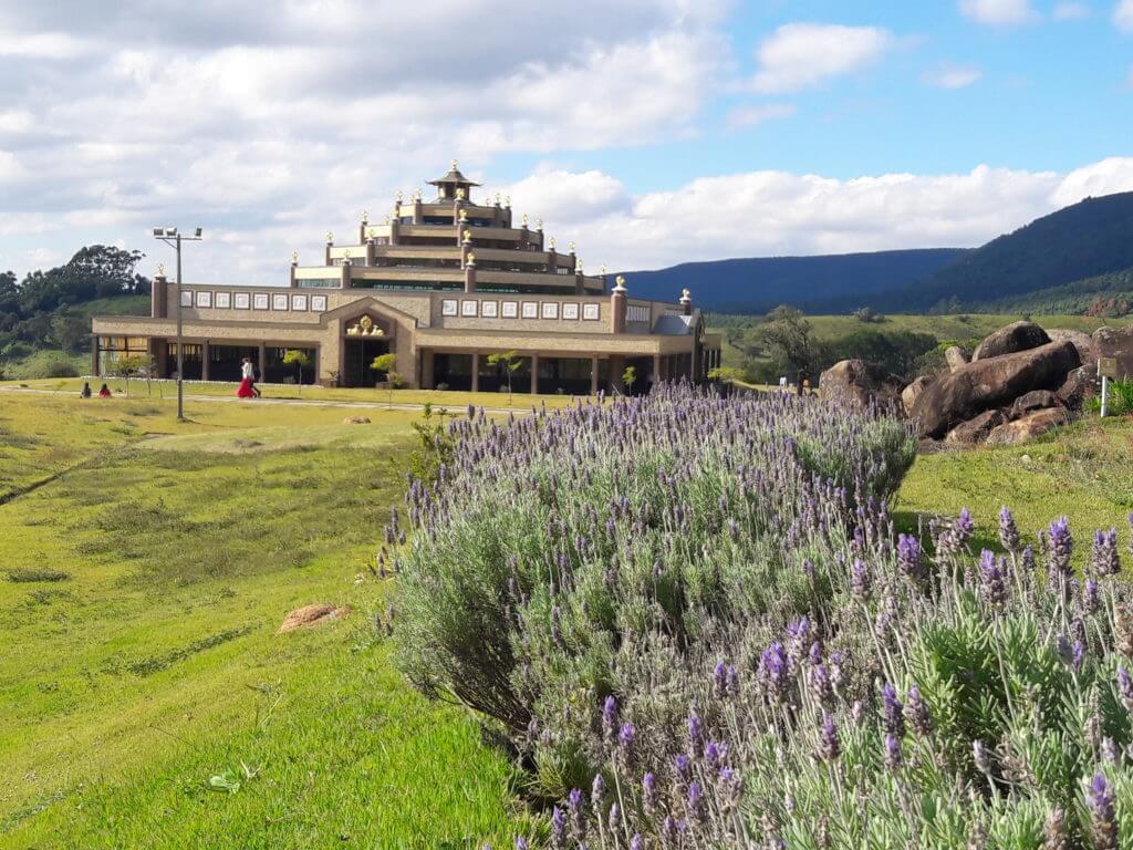 Lavandas e o templo