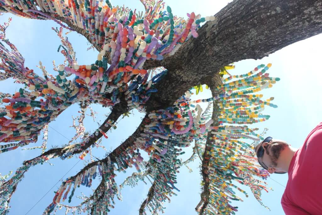 Em Pomerode ocorre a Osterfest, e um dos símbolos é esta árvore de Páscoa decorada com mais de 80.000 cascas de ovos coloridas