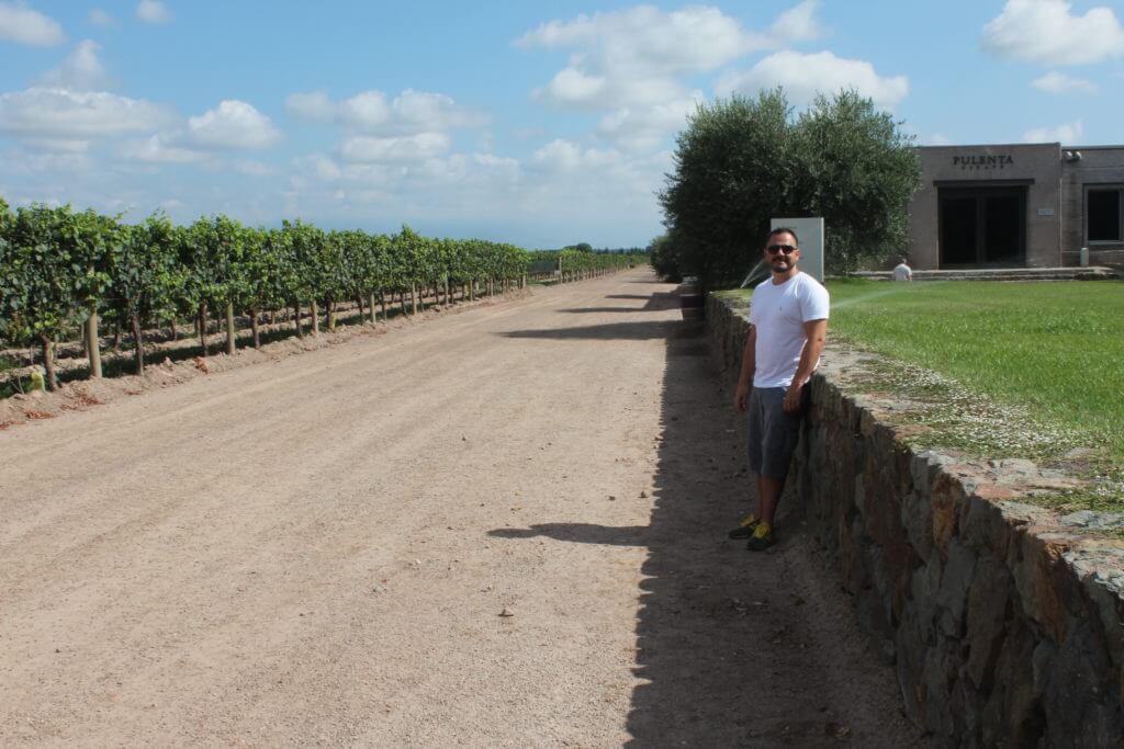 Gosta de vinhos ? se joga nas vinícolas de Mendoza