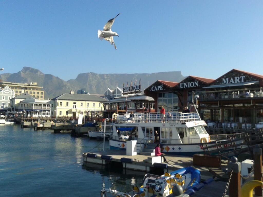 Passar uma tarde no Waterfront é uma delícia e não pode faltar no seu Roteiro Cape Town