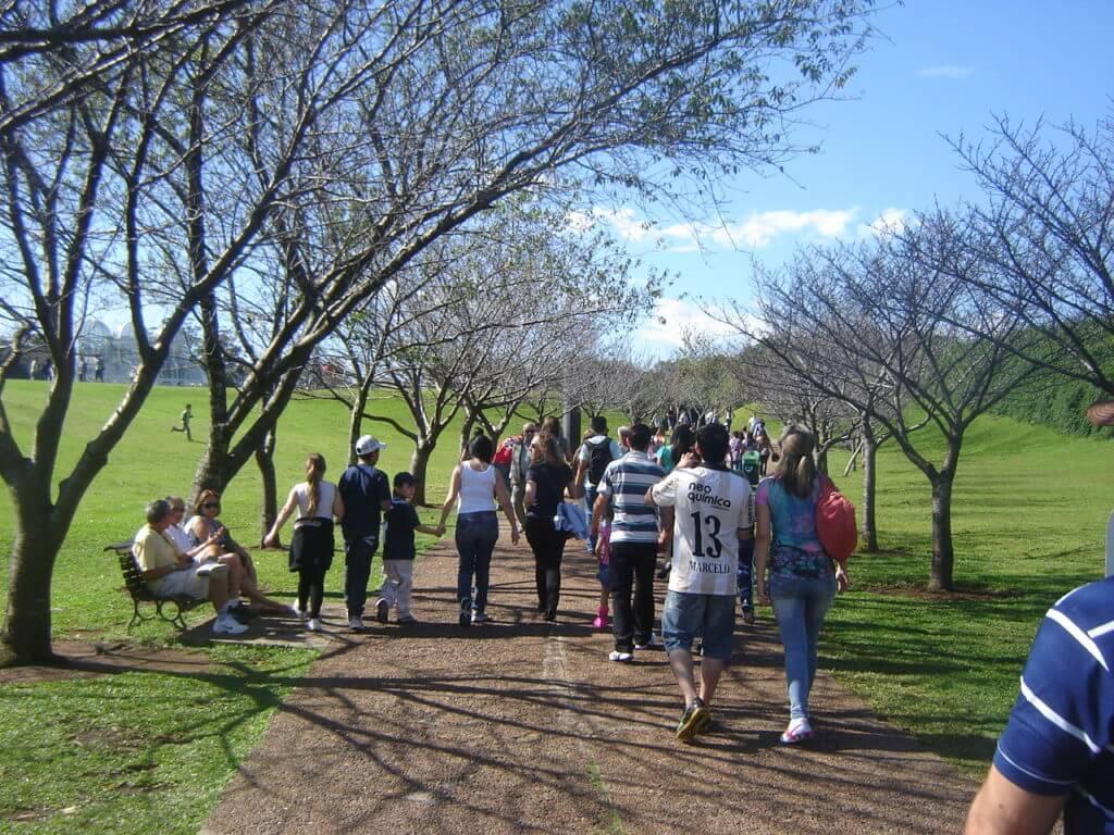 Os parques de Curitiba são símbolos da cidade mais verde do Brasil