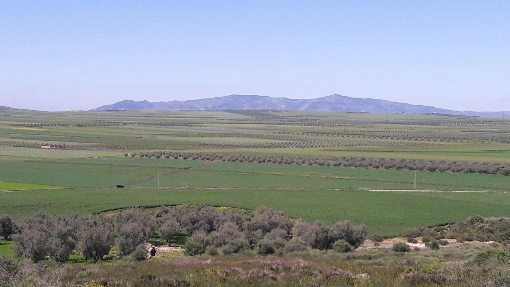 Os romanos escolheram o lugar a dedo, já que Volubilis fica no meio de uma extensa área de terras férteis no Marrocos