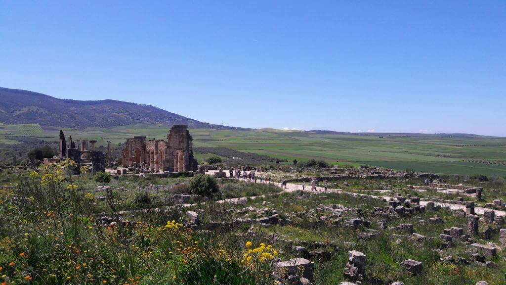 As ruínas de Volubilis em meio aos campos verdes