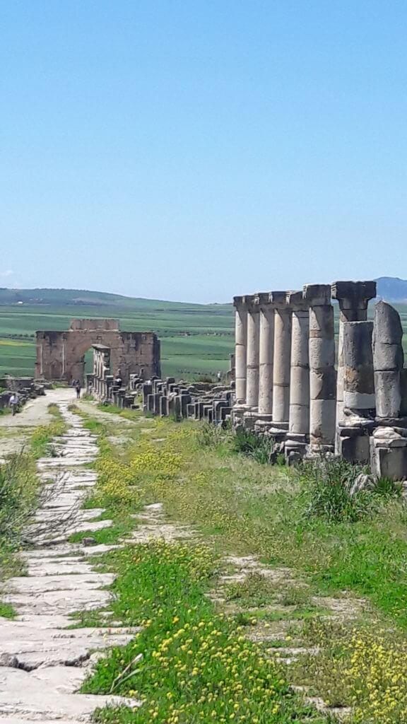 Toda vez que visito ruínas romanas fico imaginando como seria vendo a cidade toda em funcionamento. Como ir para Meknes e Volubilis
