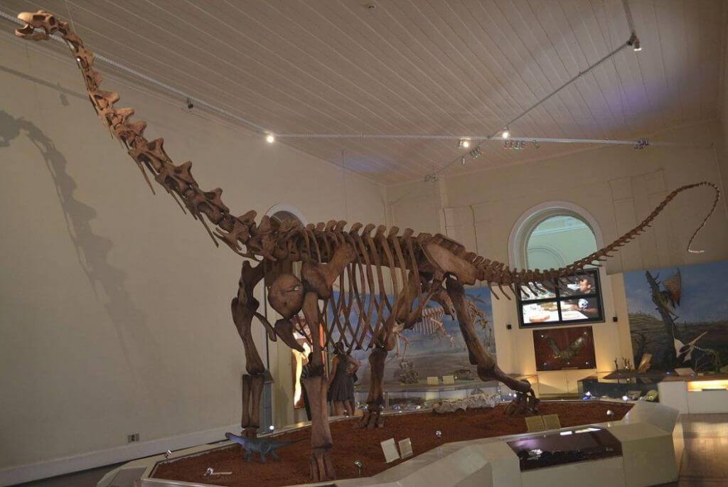 O enorme esqueleto de dinossauros impressionava as crianças e adultos