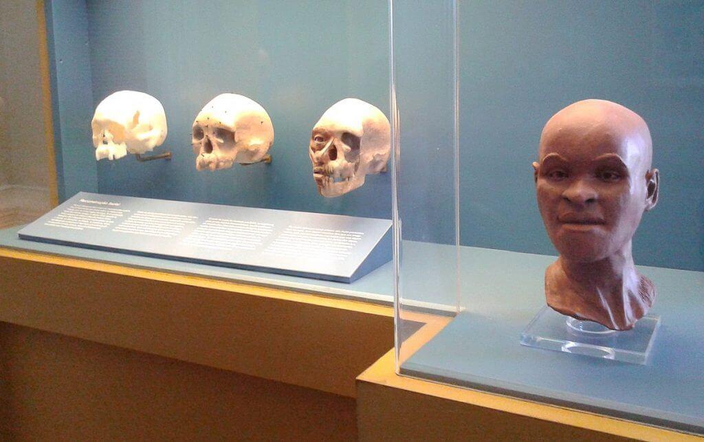 O fóssil Luzia pode ter sido consumido durante o Incêndio no Museu Nacional