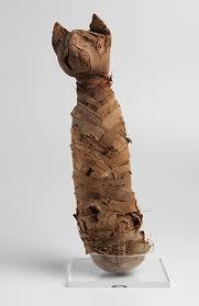 A curiosa múmia de um gato do Império Romano