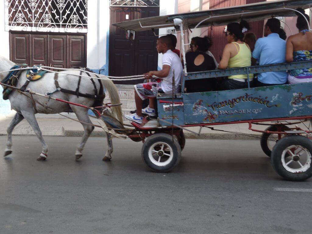 O inusitado transporte coletivo em carroças