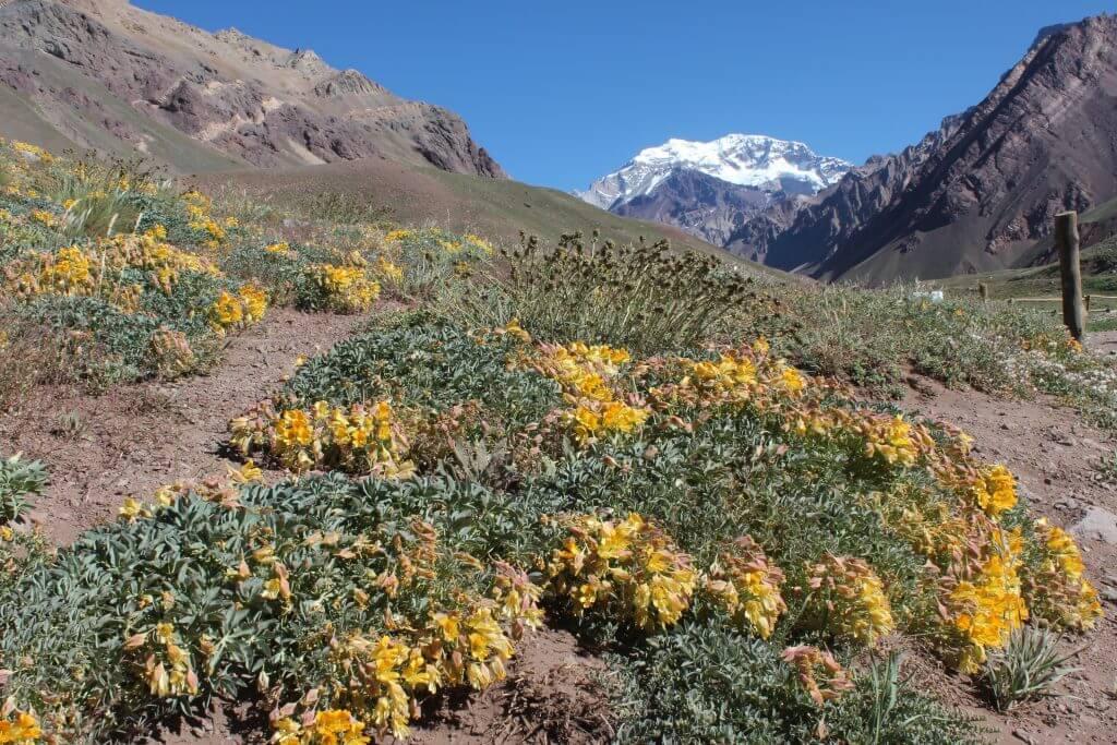 O Parque Aconcágua na estrada Santiago - Mendoza