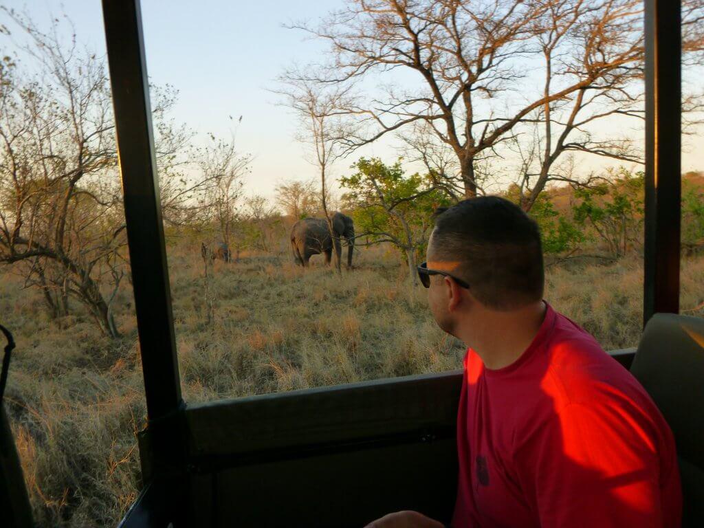 SAFARI-AFRICA-DO-SUL