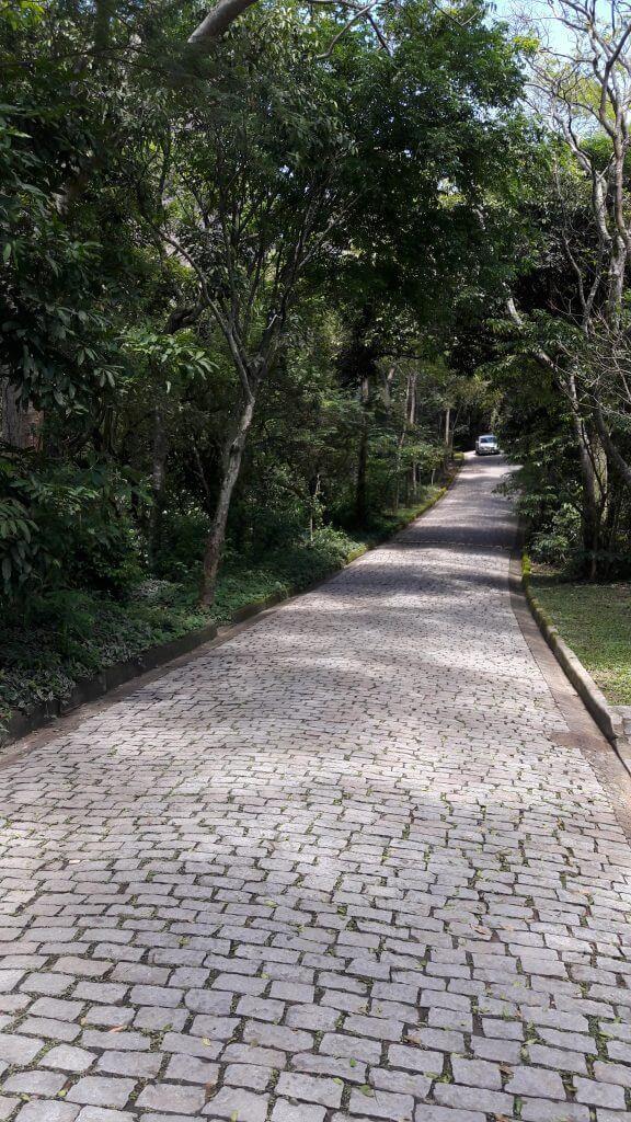 A estrada do Parque Dois Irmãos