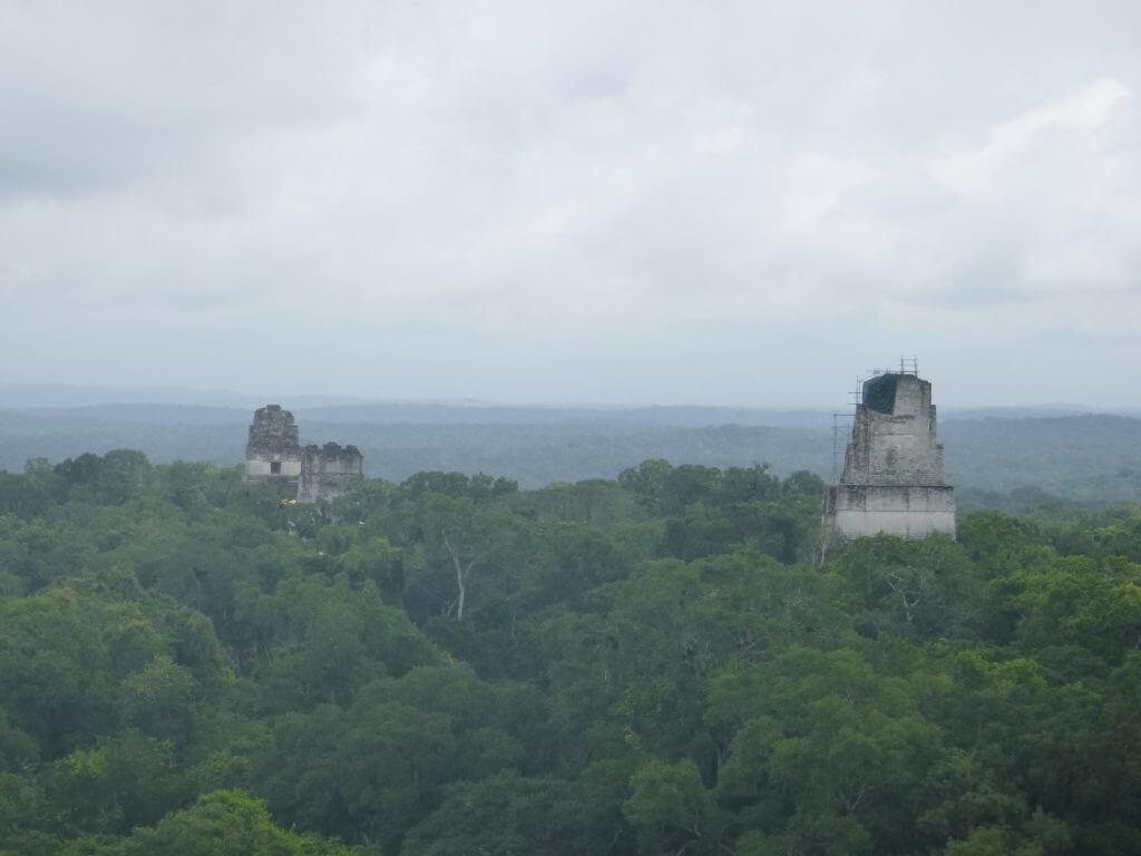 Os templos de Tikal tomados pela floresta
