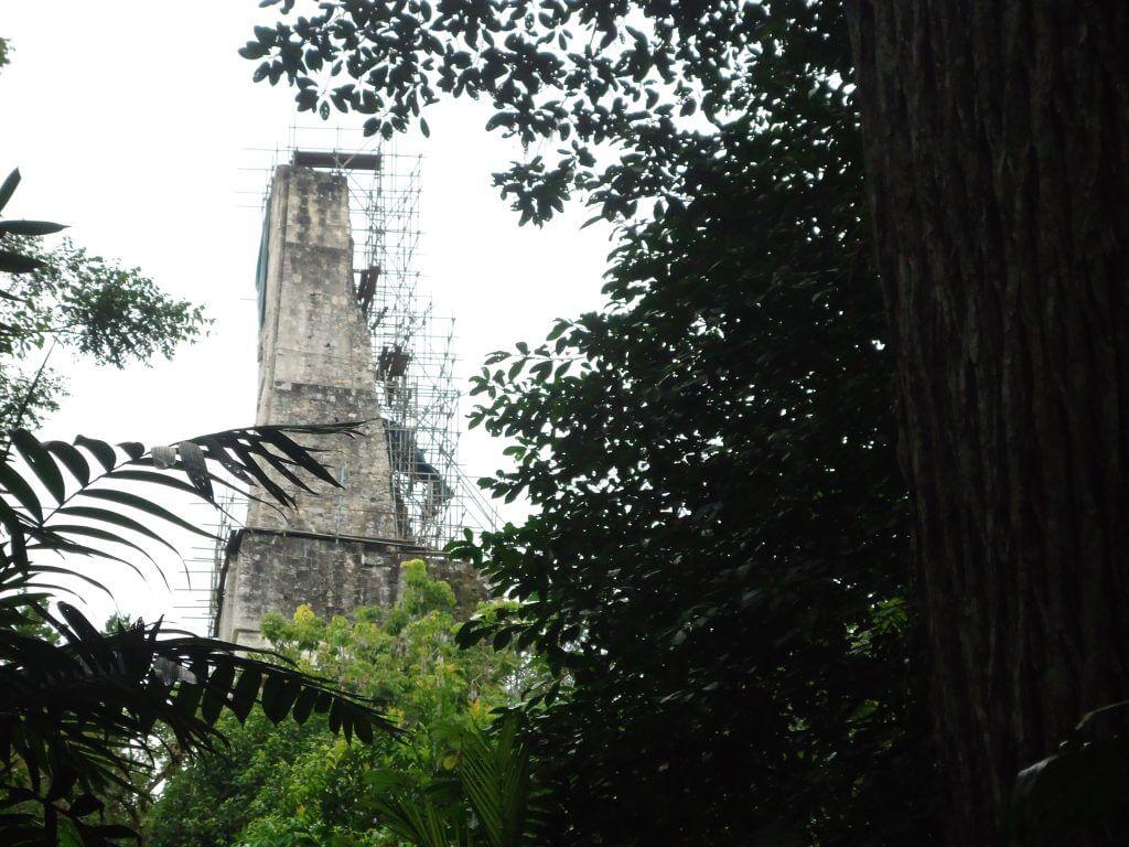 O Templo III em meio ao Parque de Tikal