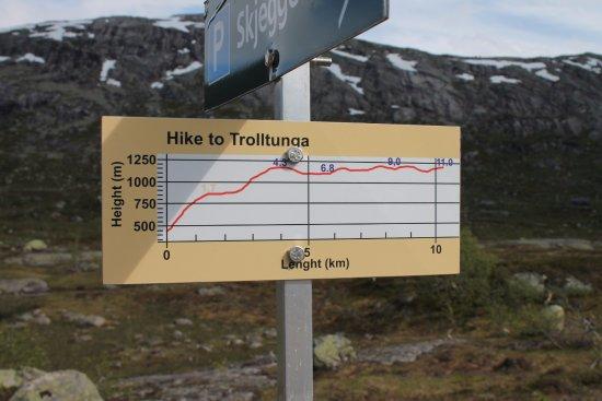 Gráfico elevação trekking Trolltunga